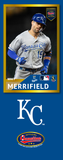 Whit Merrifield Photo Bat | MLB Collection