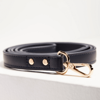 St Argo Navy Dog Lead
