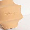 Wild One Twist Dog Toy