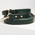 St Argo Green Dog Lead