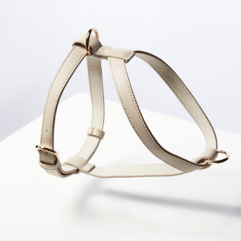 St Argo Taupe Dog Harness