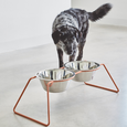 MiaCara Cena Dog Feeder Dusty Coral availabe at The Good Pet Home