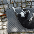 MiaCara Travel Dog Mat - Slate