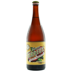 the-bruery-terreux-frucht