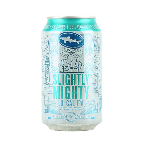 dogfish-head-slightly-mighty