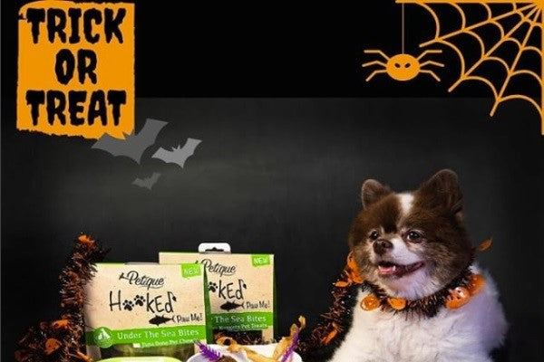 Healthy Treats for Dogs and Cats This Halloween