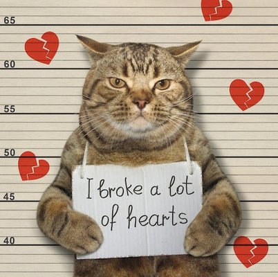 4 Ways to Love Your Pet this Valentine's Day (& Always)