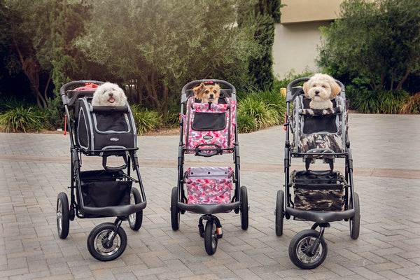 Petique's Award Winning 5-in-1 Pet Stroller