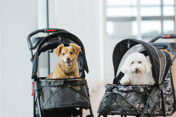 Petique Unveils the Modern Black and Green Camo Strollers for Your Pet's Luxury Experience