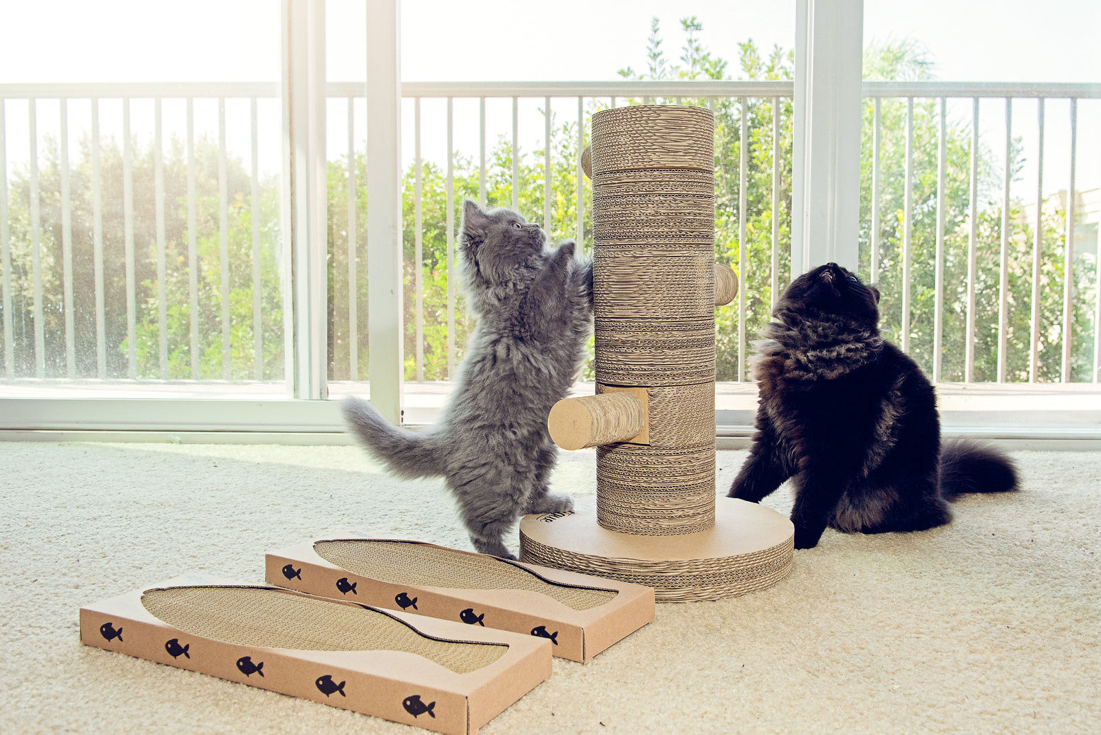 The Best Scratching Post You Can Buy: Kung Fu Paw