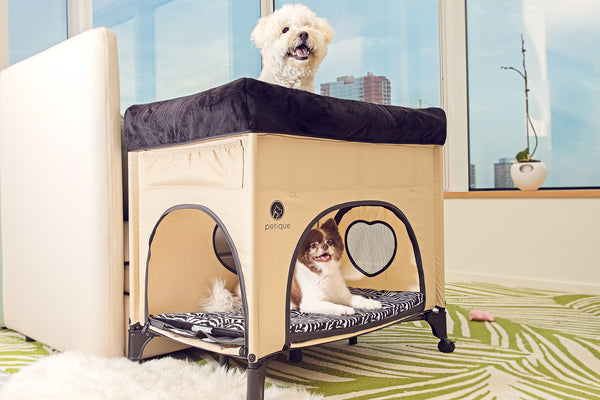 Bedside Lounge - A BUNK BED for Pets?!