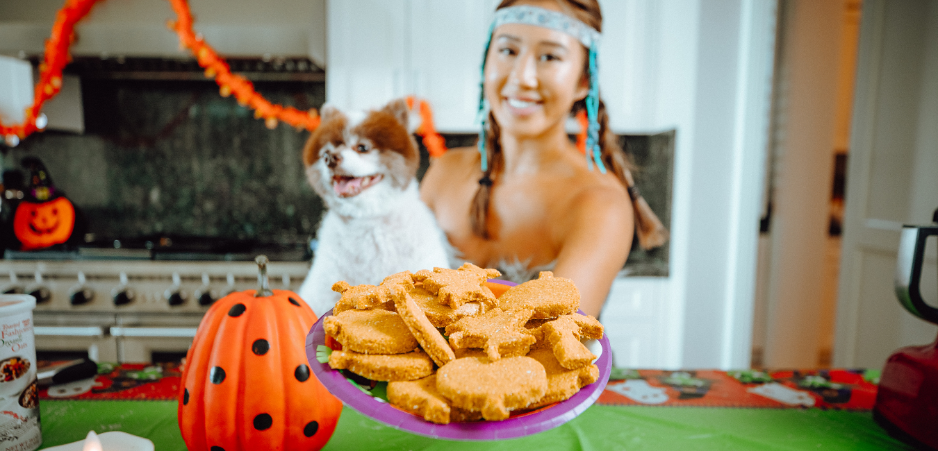 Halloween Pumpkin Dog Treat Recipe - ONLY 4 Ingredients