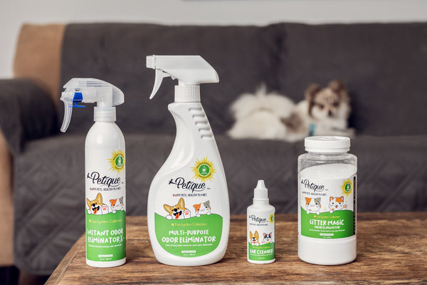 Best 4 Pet Odor Eliminator Products in 2021
