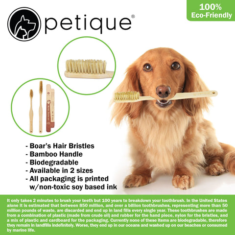 Petique's Eco Bamboo Toothbrush