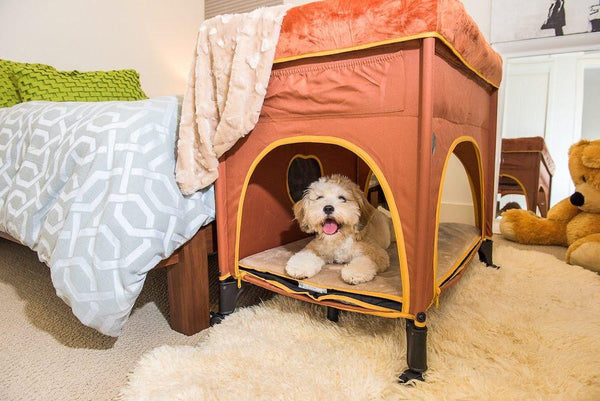 Bedside Lounge Pet Bed