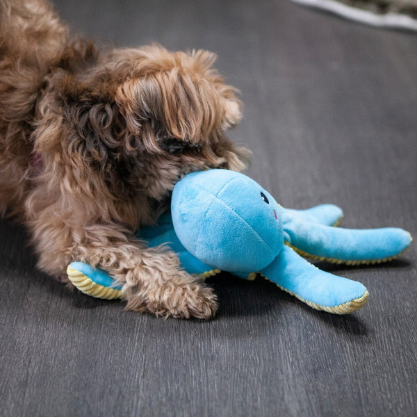 Opal the Octopus Pet Toy
