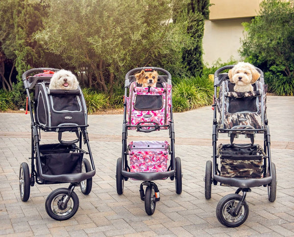 5-in-1 Pet Stroller (Complete Set with Pet Carrier and Stroller Frame)