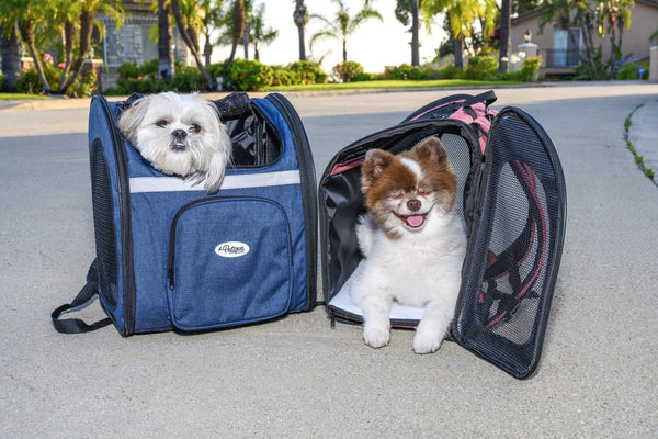 The Backpacker Pet Carrier