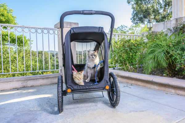 Breeze Pet Jogger