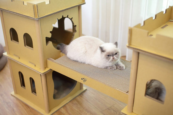 London Bridge Cat House