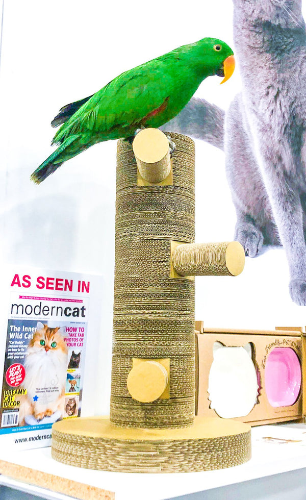 Kung Fu Paw Scratching Post for Cats and Birds