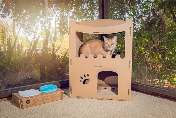 Feline Penthouse Cat House
