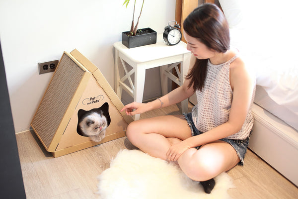 Pet and Pets Tippy Peak Eco Pet House