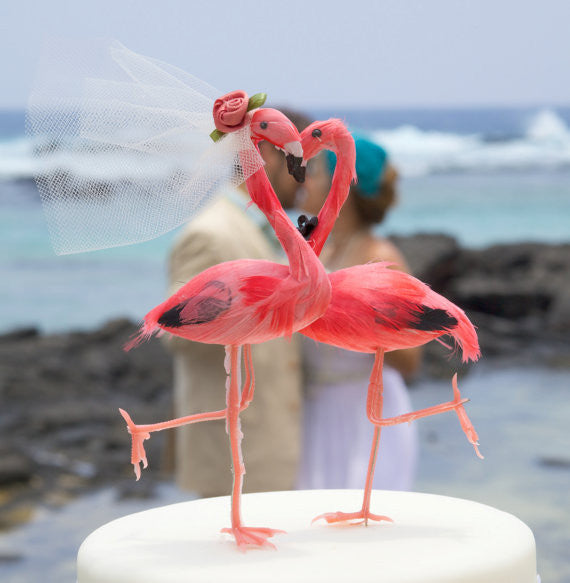"""Pink Flamingo Love Birds"" Valentine Party"