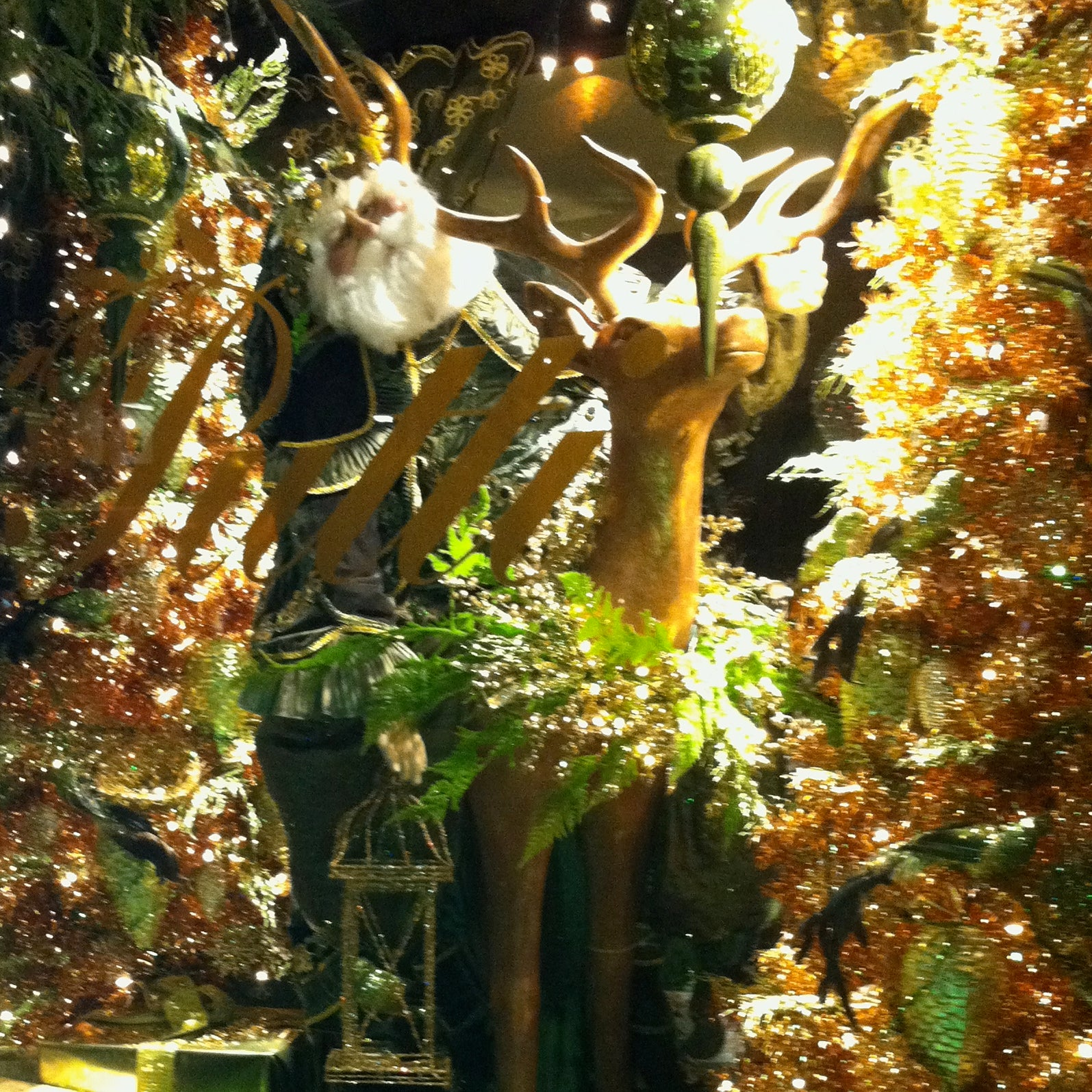 Christmas Windows 2011
