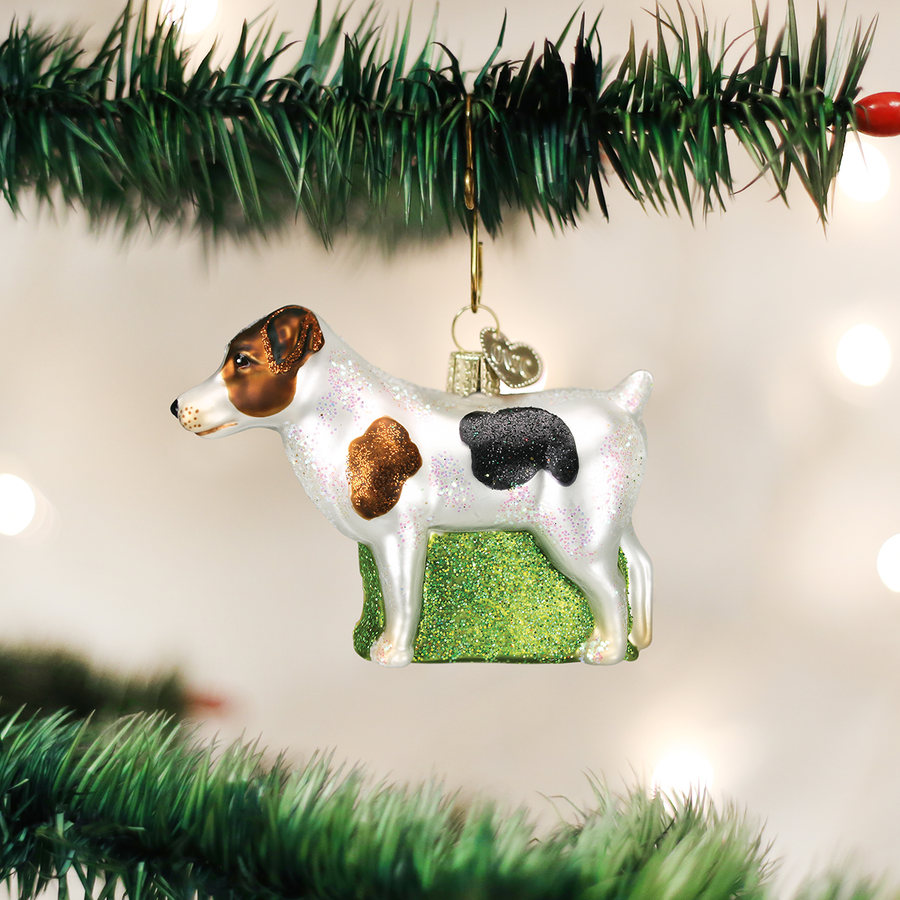 Old World Jack Russel Glass Ornament