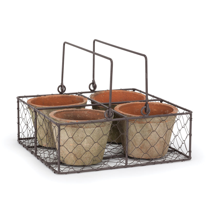 Quad Moss Pot in Basket, AC-Abbott Collection, Putti Fine Furnishings