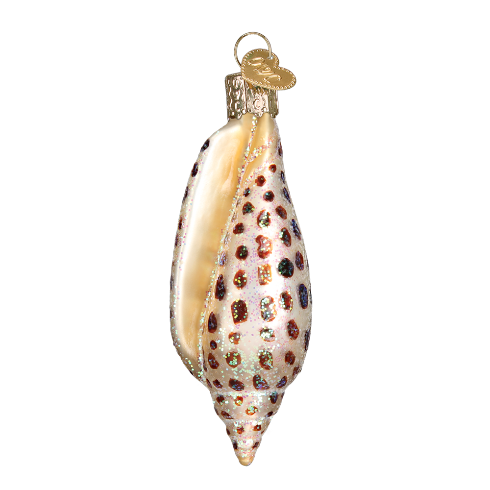 Old World Christmas Junonia Shell Glass Ornament