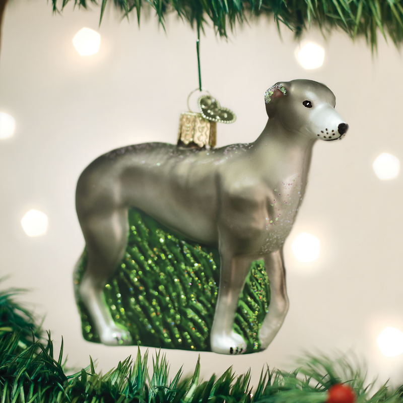 Old Word Christmas Greyhound Glass Ornament | Putti Christmas