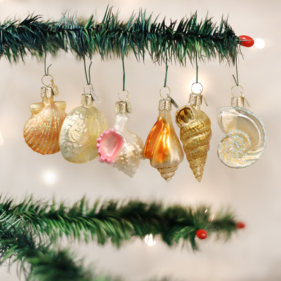 Old World Christmas Assorted Sea Shell Set of Ornaments -  Christmas Decorations - Old World Christmas - Putti Fine Furnishings Toronto Canada - 2