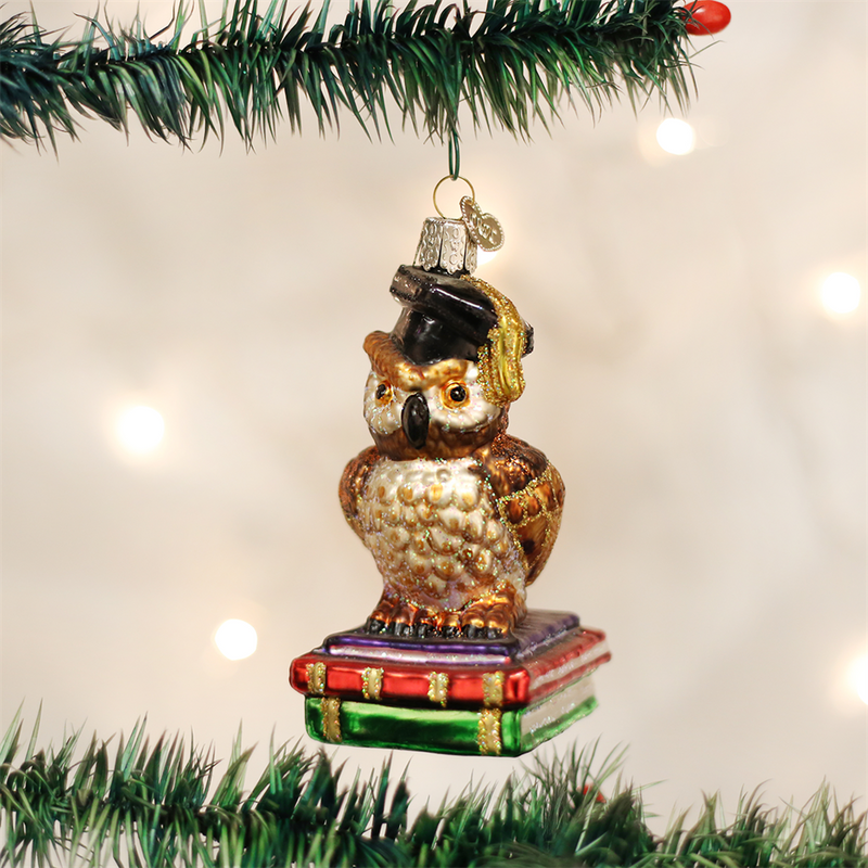 Old Word Graduation Owl Glass Ornament, OWC-Old World Christmas, Putti Fine Furnishings