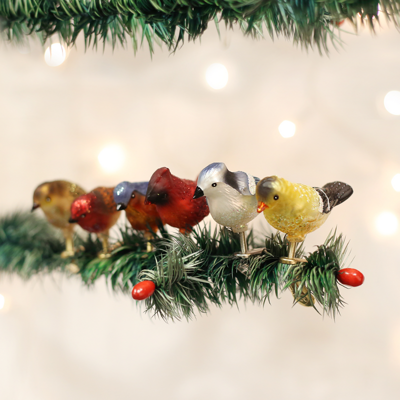 Old Word Christmas Assorted Mini Songbirds Glass Ornament