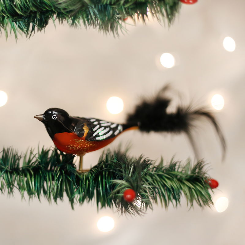 Old World Christmas Baltimore Oriole Glass Bird Ornament -  Christmas Decorations - Old World Christmas - Putti Fine Furnishings Toronto Canada - 1