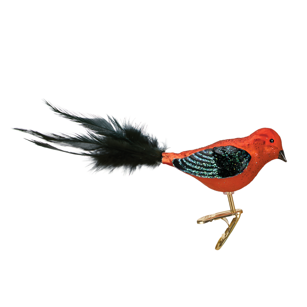Old Word Christmas Scarlet Tanager Glass Ornament