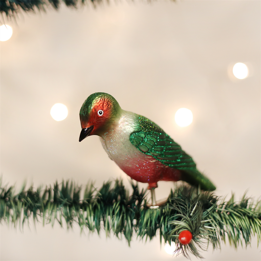 Old Word Christmas Lewis's Woodpecker Glass Ornament