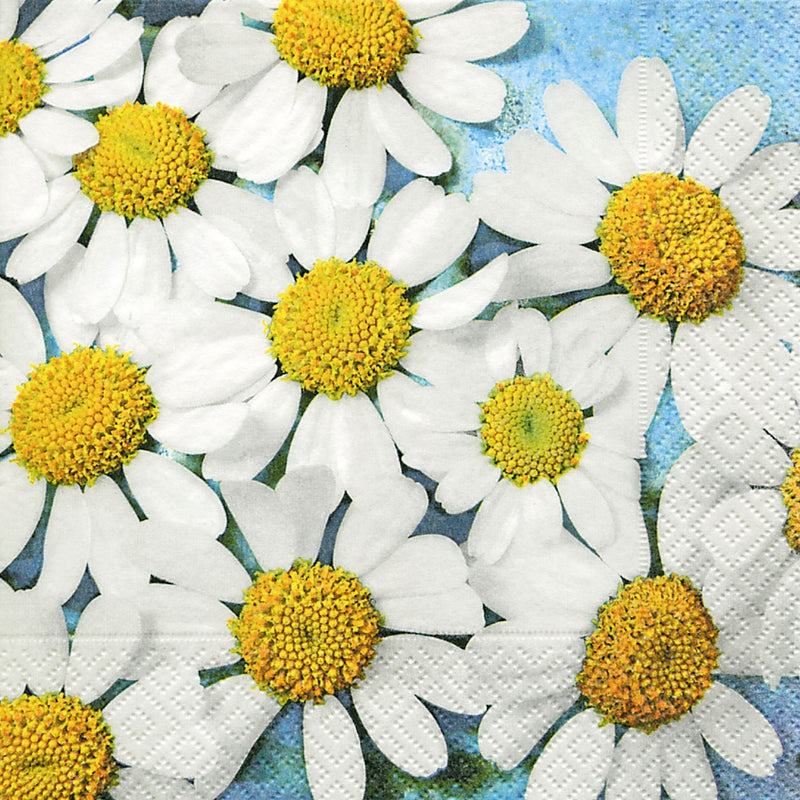 Daisies Paper Napkins - Lunch | Putti Easter Celebrations