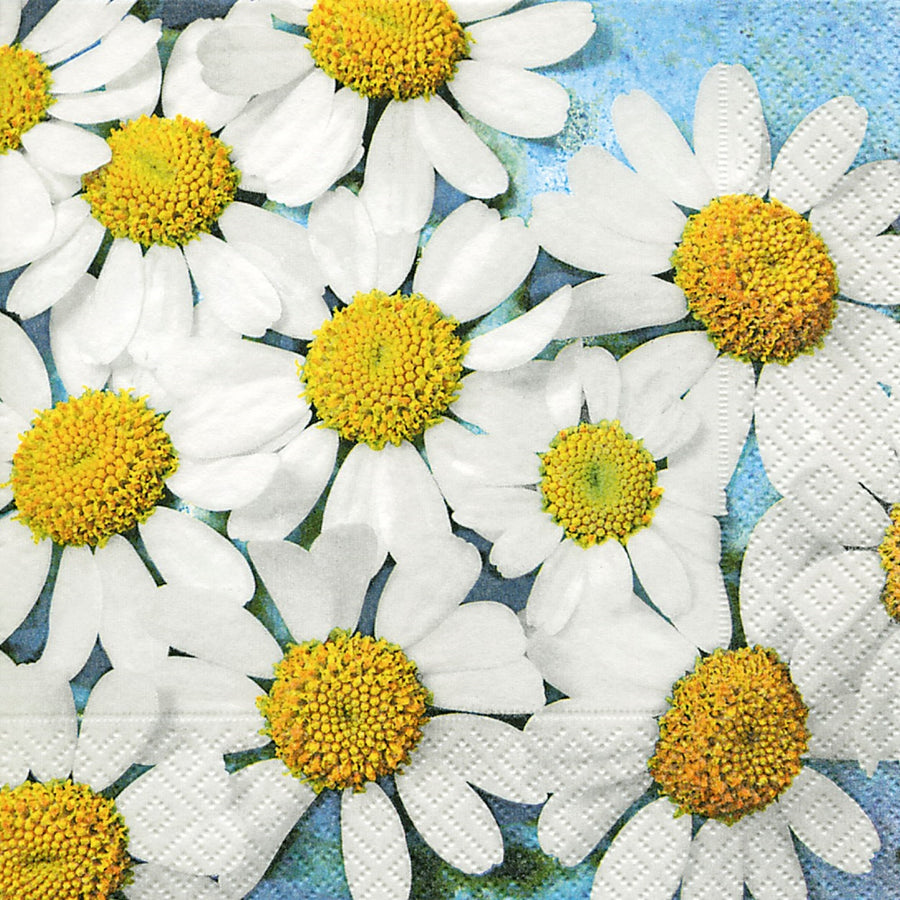 Daisy Paper Napkins - Lunch