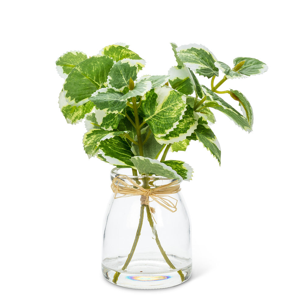 Varigated Greenery Vase | Putti Fine Furnishings
