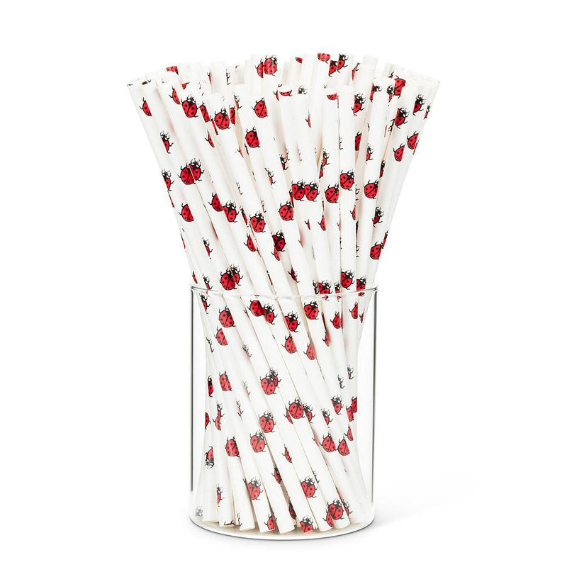 Straws with Ladybug  Print - Box of 100 | Putti Party Supplies