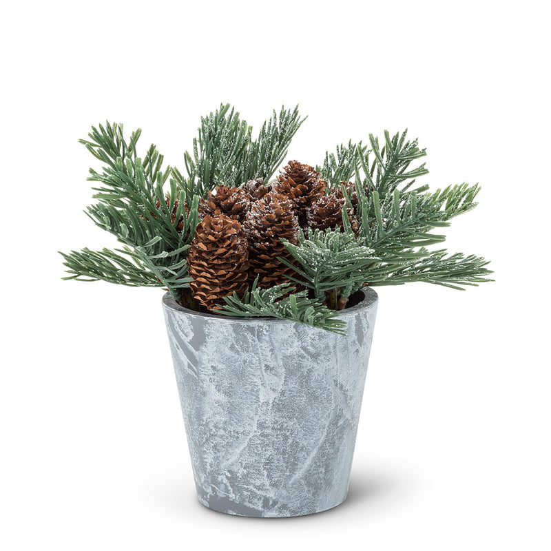 Pine Branches and Pinecones in Tin Pot | Putti Christmas Celebrations Canada