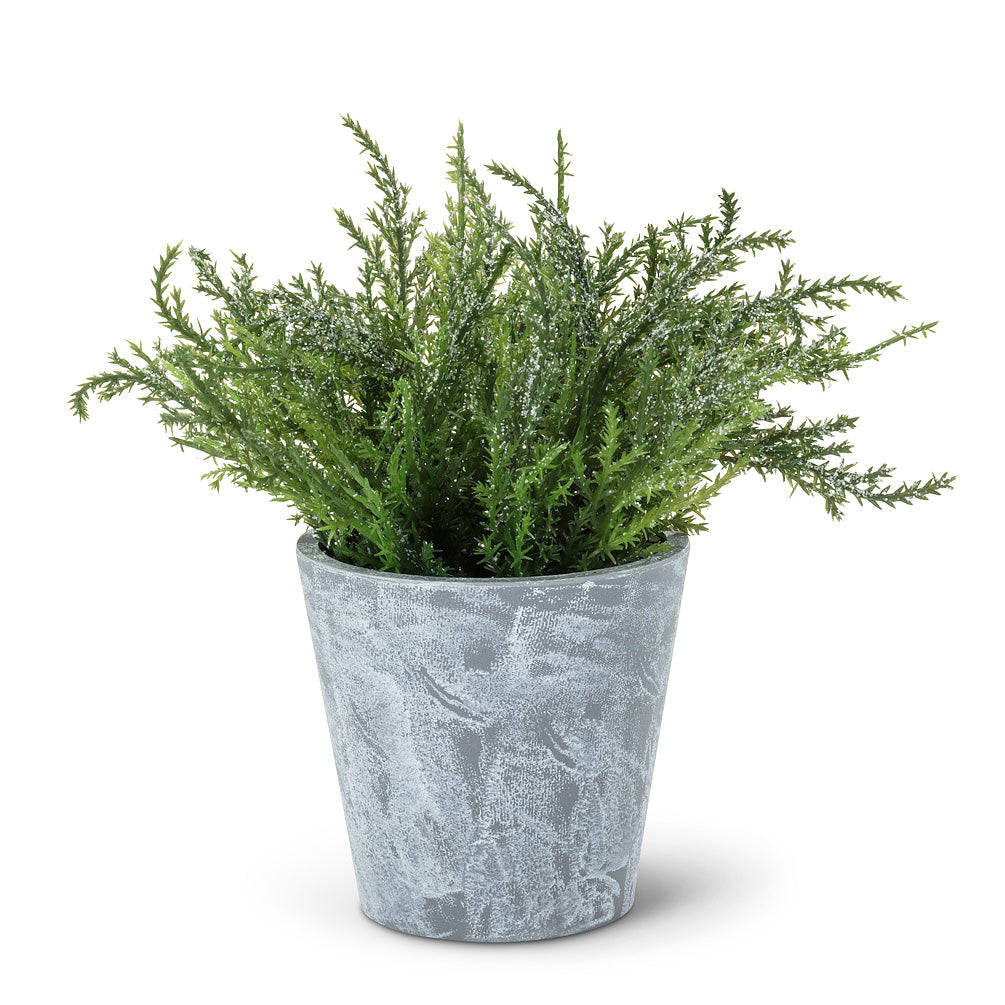 Frosted Greenery in Pot