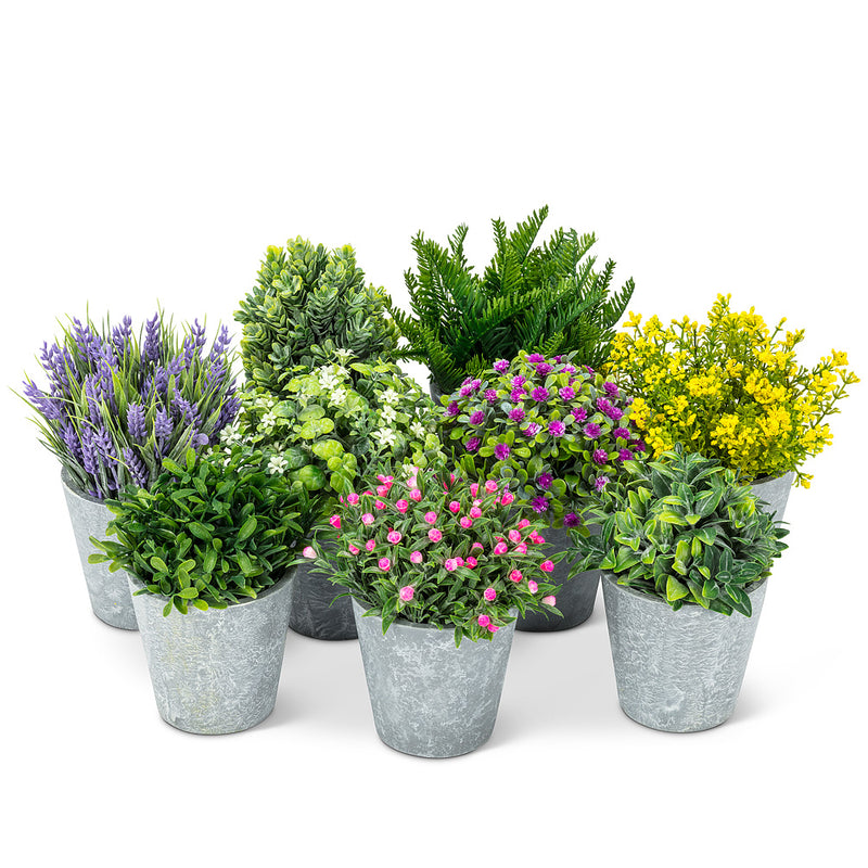 Purple Flowering Plant Pot | Putti Fine Furnishings