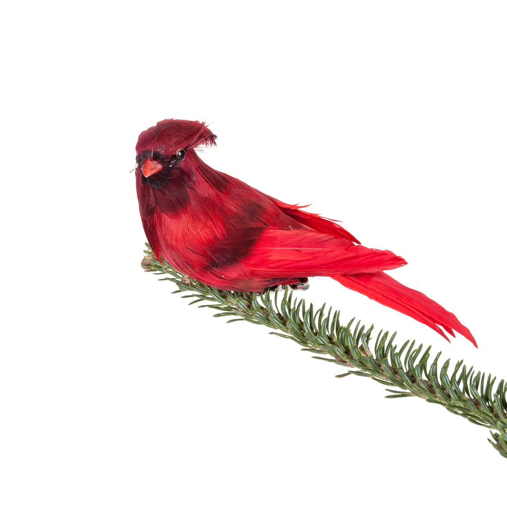 Feathered Cardinal with Clip