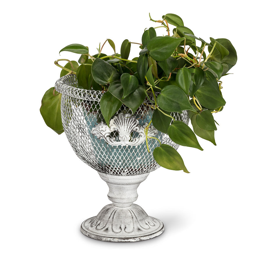 White Mesh Pedestal Planter, AC-Abbot Collection, Putti Fine Furnishings
