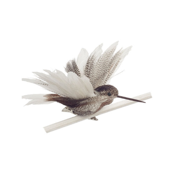 Natural Feather Hummingbird with Clip