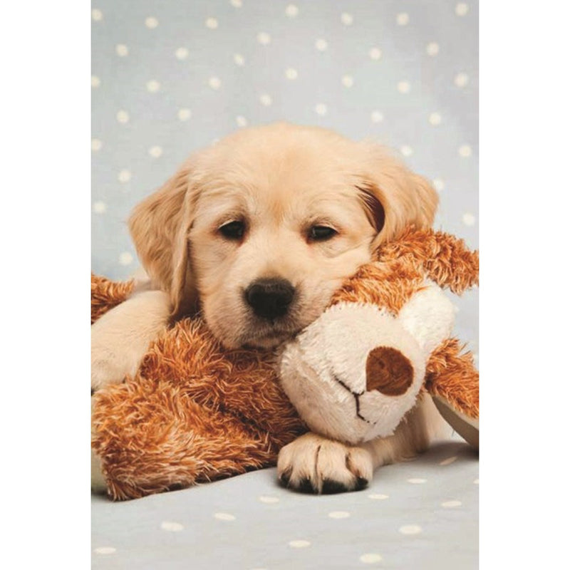 Retriever and Teddy Greeting Card, Bella Flor, Putti Fine Furnishings